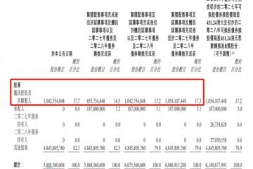 美团配股发债融资96亿美元腾讯认购后持股超17%