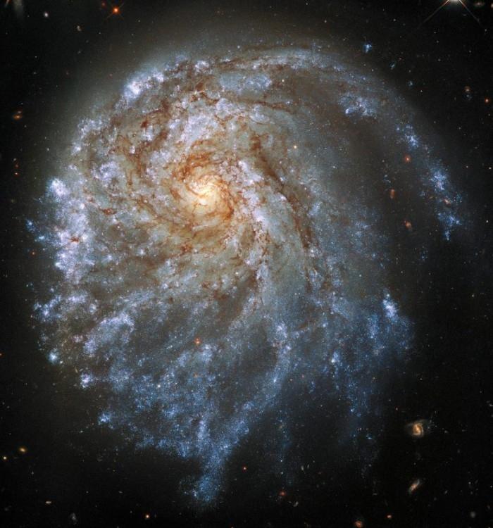 哈勃望远镜拍摄的壮观图像显示了一个奇怪扭曲的螺旋星系